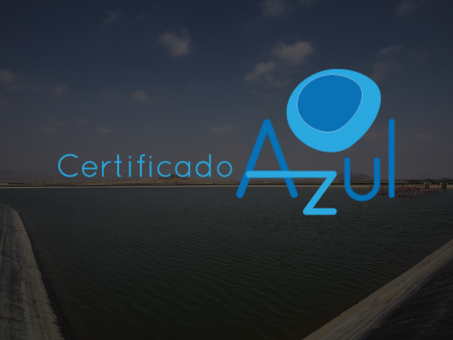 ACP receives Blue Certificate