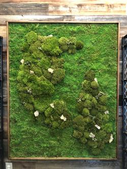 Upscale Dispensary - Moss Wall Art