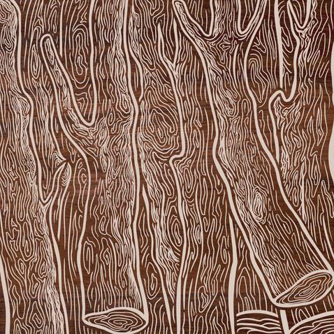 Desmatamento na Amazônia bate recorde pelo quarto mês seguido em 2021