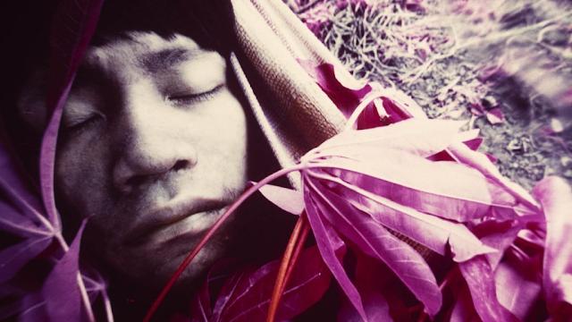 A foto mostra um homem indígena adulto dormindo. Ele tem os olhos levemente puxados, lábios carnudos, cabelo preto escuro e liso. Ele está deitado em uma rede. Em volta do seu rosto está coberto de folhas e ao lado se vê o chão da floresta. A foto está com infravermelho, então está tudo levemente roxeada.