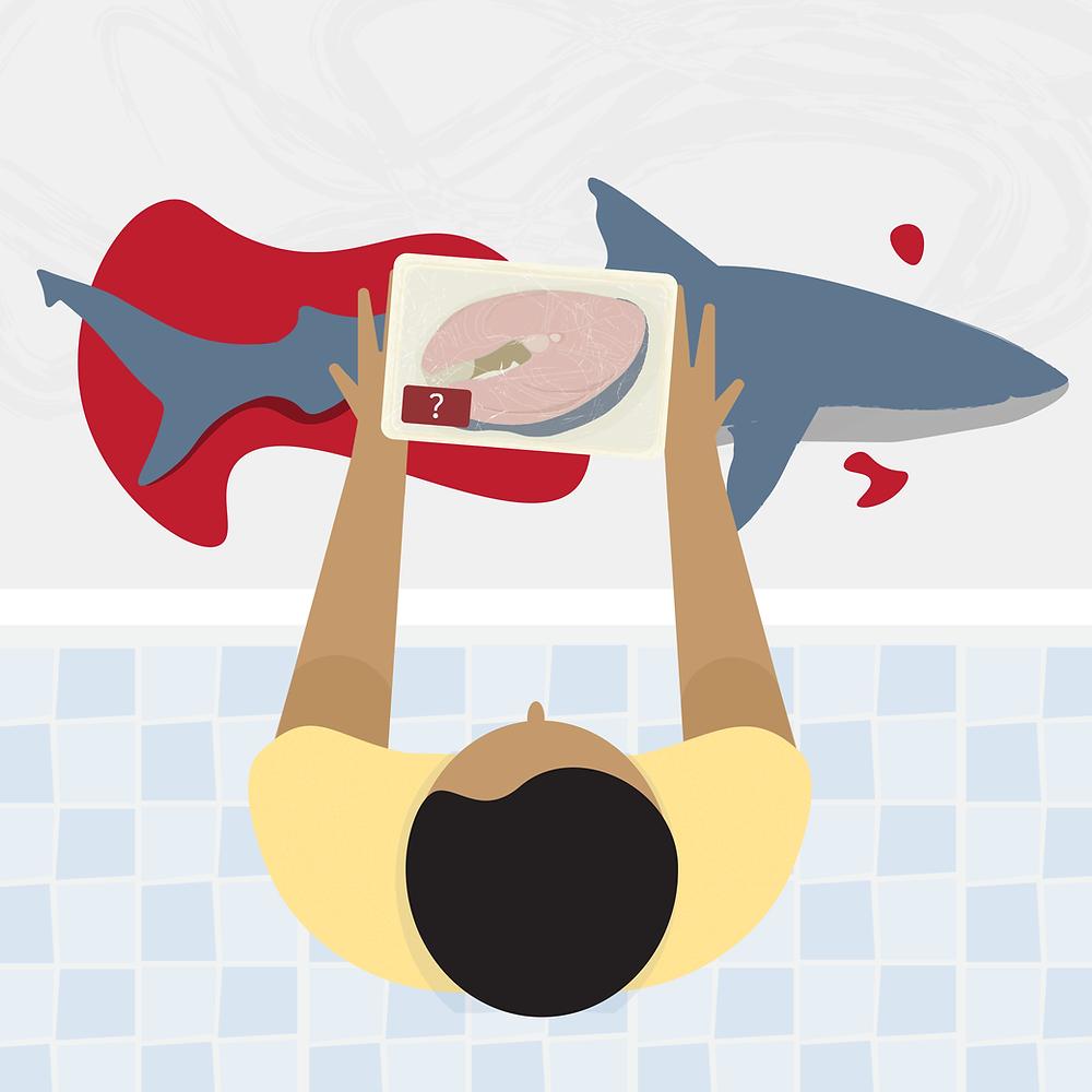 A ilustração mostra um tubarão em uma prateleira com sangue e um pedaço de cação sendo vendido com uma interrogação. Um homem está com as mãos nessa prateleira.