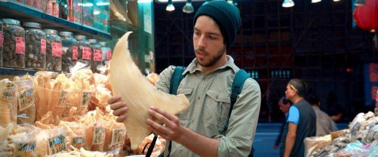 A foto mostra Tabrizi: homem, branco, barba, veste camisa verde desbotado. Ele segura uma barbatana de tubarão a venda em Hong Kong.