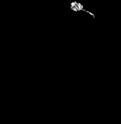 logo_Fleurs_dici_fond_transparent_210x.png