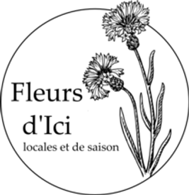 logo_Fleurs_dici_fond_transparent_210x.p