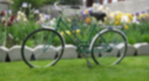 Lawn, Bike, Grass, Flowers
