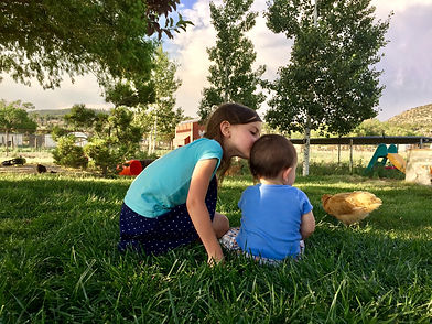 Lawn, Grass, Kids, Chicks, Fescue