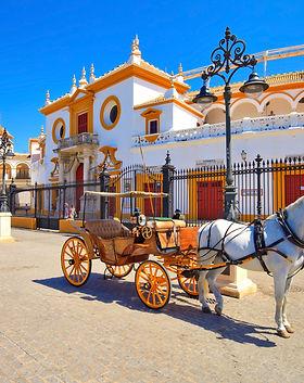 Plaza de toros sevilla .jpeg