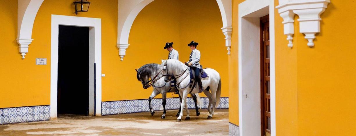 Ecole Royale de Jerez