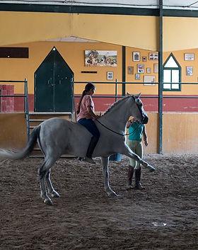 chevaux luis.jpg