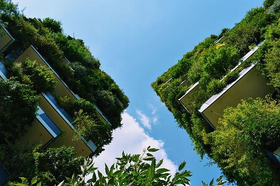 The World we Build, Radical Sustainability