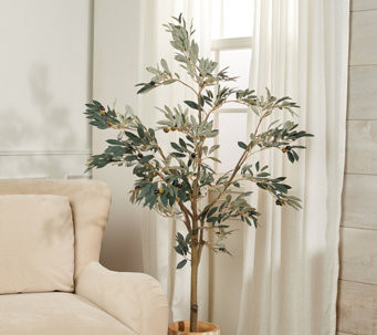 "I have been looking for a tall plant for my house and have always loved olive trees.  Is it pricey?  A bit but it comes recommended from this designer.  Ripe olives and green leaves are affixed to the branches of this lifelike tree. Display it in a decorative urn to bring natural beauty to your home decor. From the Valerie Parr Hill Collection. Lifelike olive leaf tree in weighted pot Olives and green leaves attached to branches For indoor use only Measurements: Tree 5'H; Pot 5""D x 4-1/2""H"