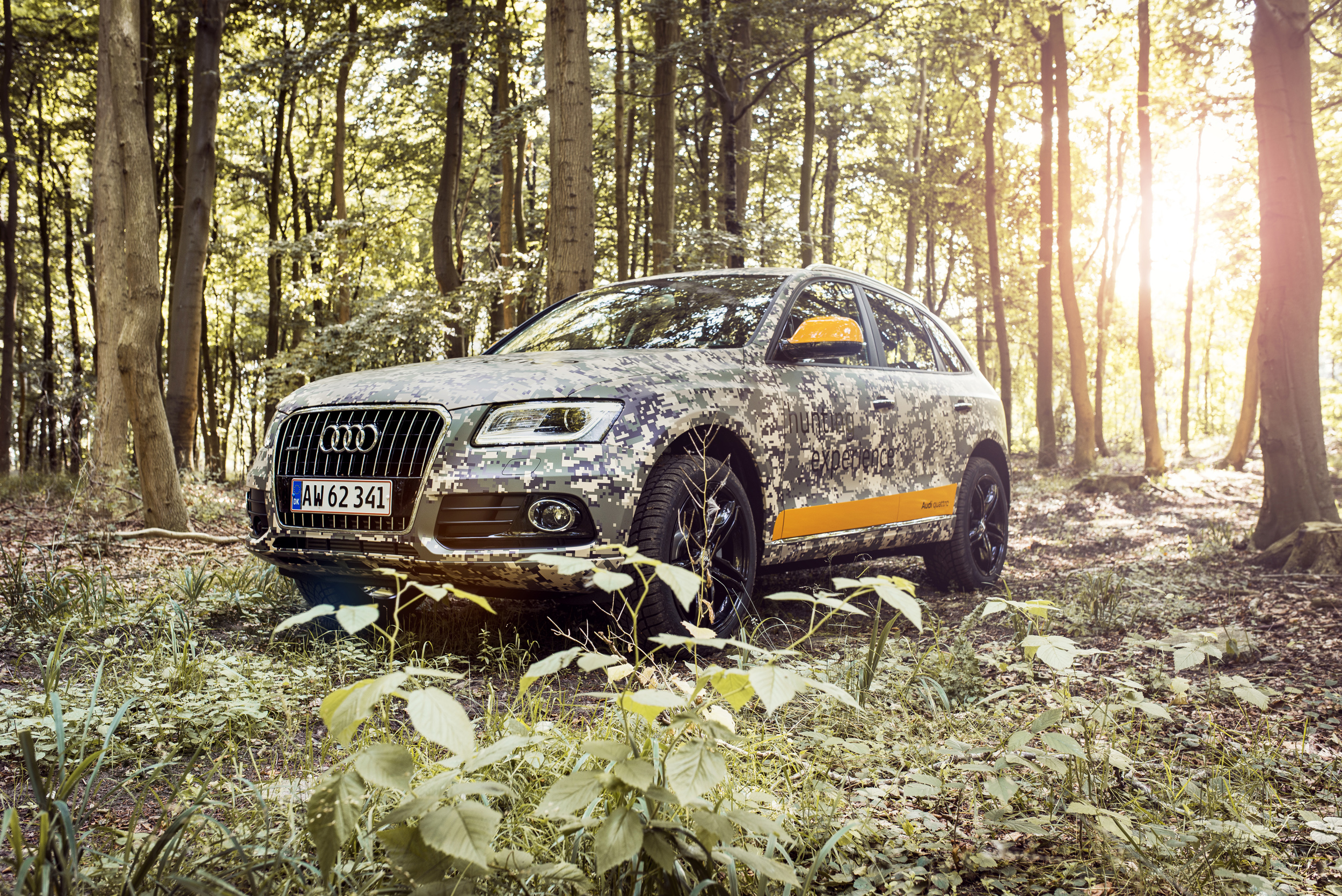 Audi Q5 - hunting experience