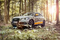 Audi Q5 - hunting experience
