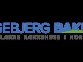 Egebjerg Bakke - opfører 102 rækkehuse