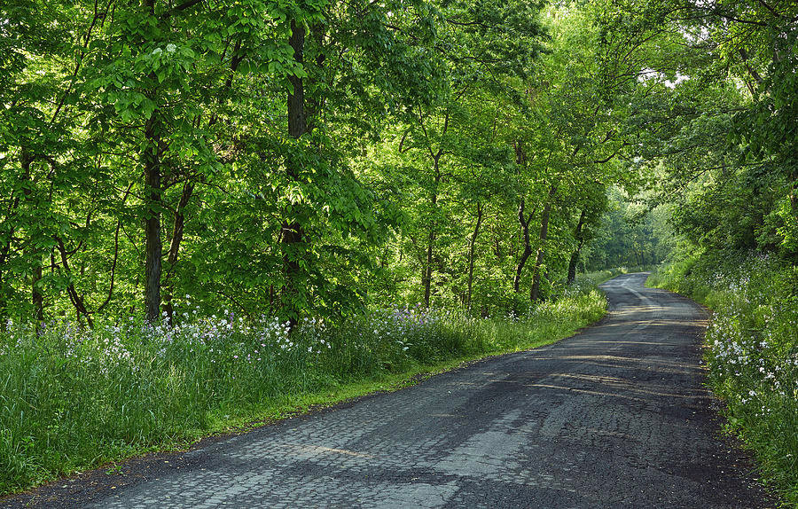 country-roads-morning-rides-spring-beaut