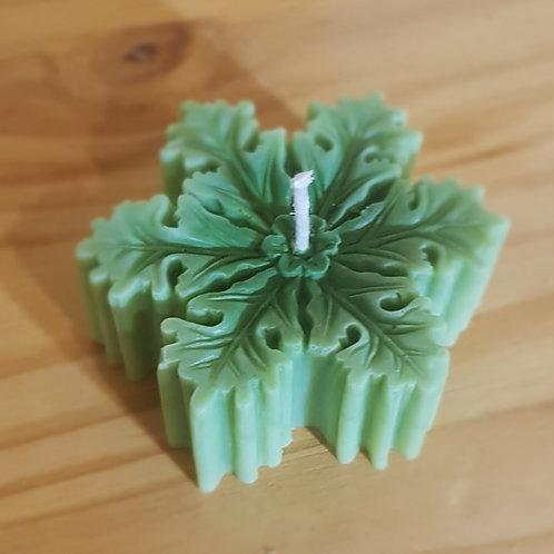 bougie vert cire de soja