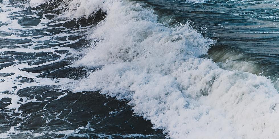Highland Ocean Plastics Webinar 2020