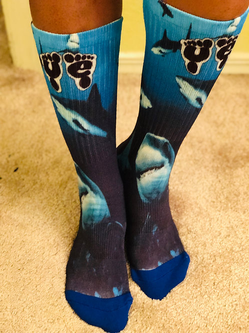 "Sharks ""Below the calf"" seasonal"