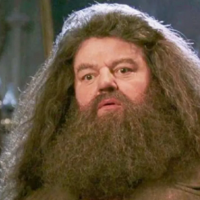 Harry Potter Theory: Hagrid Was A Death Eater