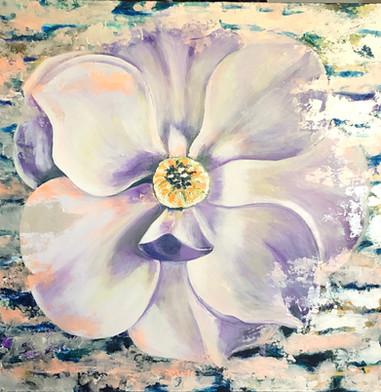 Brilliant Magnolia