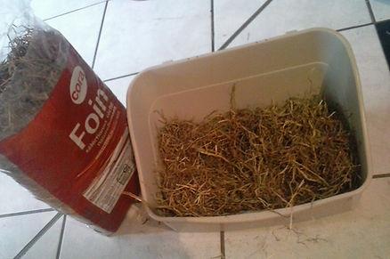 Aménager la cage d'un lapin, aménagement cage, élevage familial lapins nains, litière