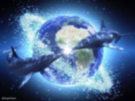 deux dauphins tour de la terre lumière eau