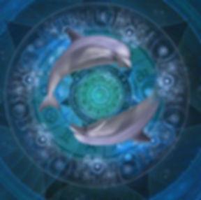 symbole dauphin intelligence cosmique initiation reiki dauphin