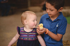 Cuddling Chick