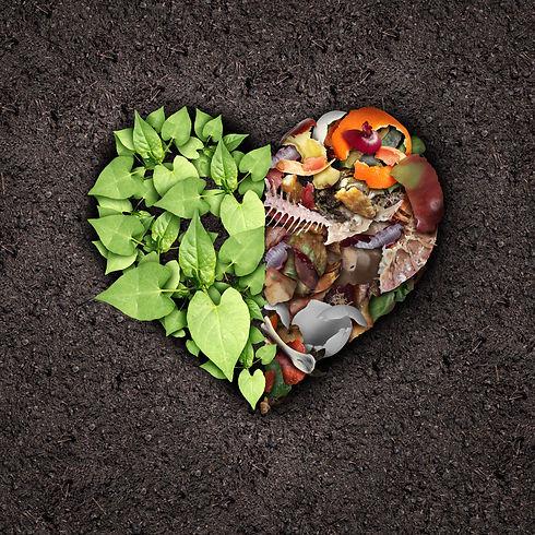 Compost heart.jpeg