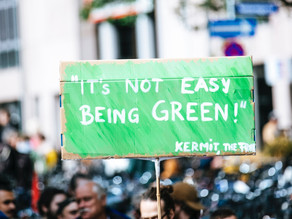 The Green New Deal in Limbo
