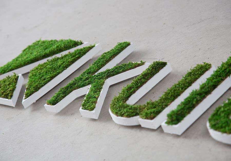 Kulte végétal