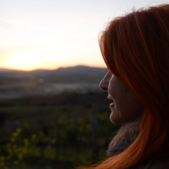 Brand | Fattoria Le Pupille: Love for the land, Passion for wine