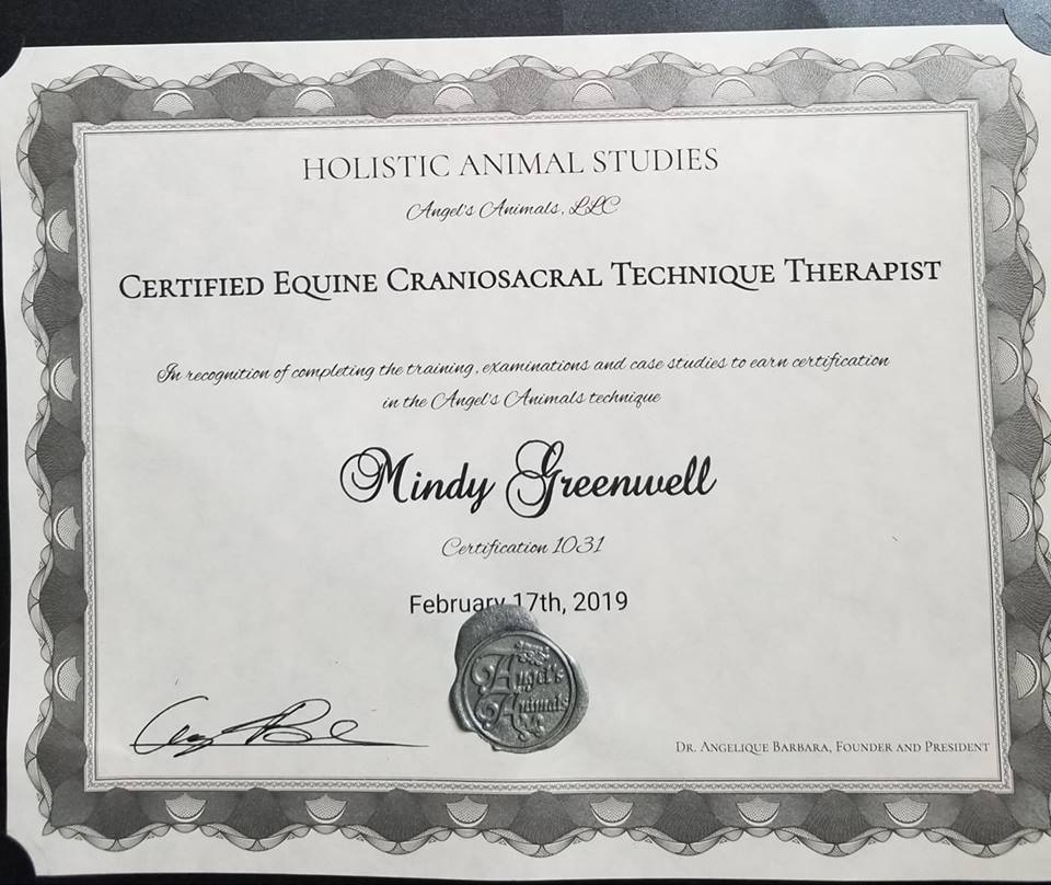Certification for CST