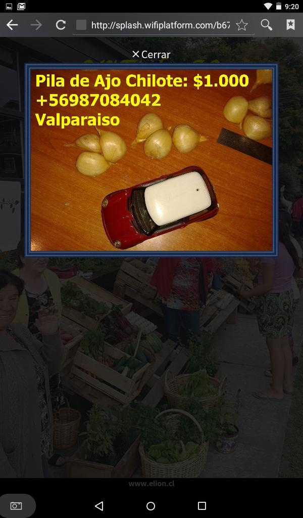 Portal Cautivo con foto de Feria Libre de Frutillar