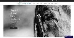 Web shop Sanequine international
