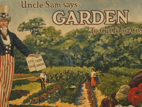 Creating a #NewAmericanVictoryGarden