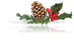 Pine Cone Deco w- Reflection (BL).png
