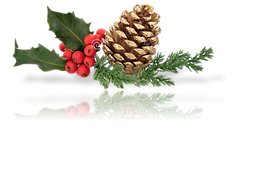 Pine Cone Deco w- Reflection (BR).png