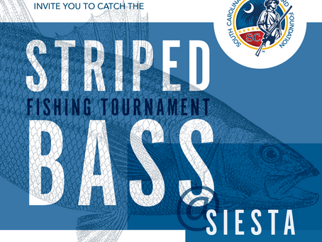 1st Annual Striped Bass Tournament at Siesta Cove Marina - Details To Come