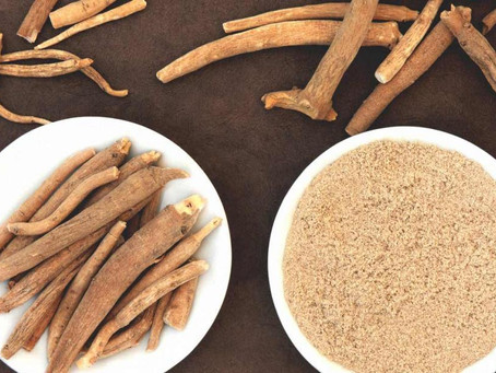 Ashwagandha Benefits for Immunity, Anxiety Support