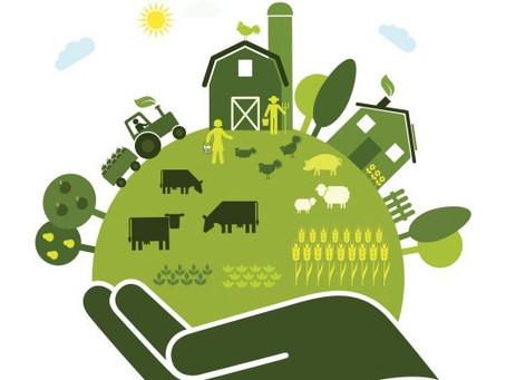 Τρόφιμα: Οργανώσεις και εταιρείες καλούνται να αλλάξουν πλεύση και να ευθυγραμμιστούν με την Ε.Ε.