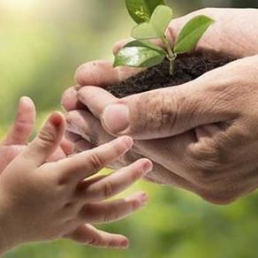 Παγκόσμια Ημέρα Περιβάλλοντος: Ημέρα εορτασμού και απολογισμού…