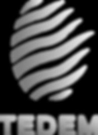 Logo nuance de gris.png