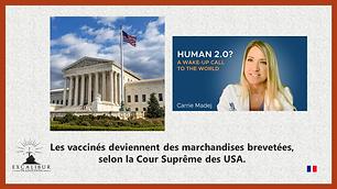 maquette Court suprême USA - PRopriété genome pour upload.png