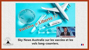maquette Avion Vaccins liberté pour upload.png