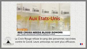 maquette Croix Rouge US vaccin covid  po