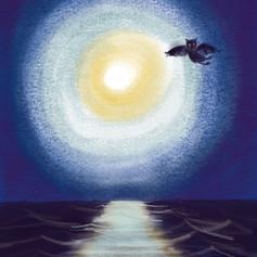 Mondschein über dem Meer