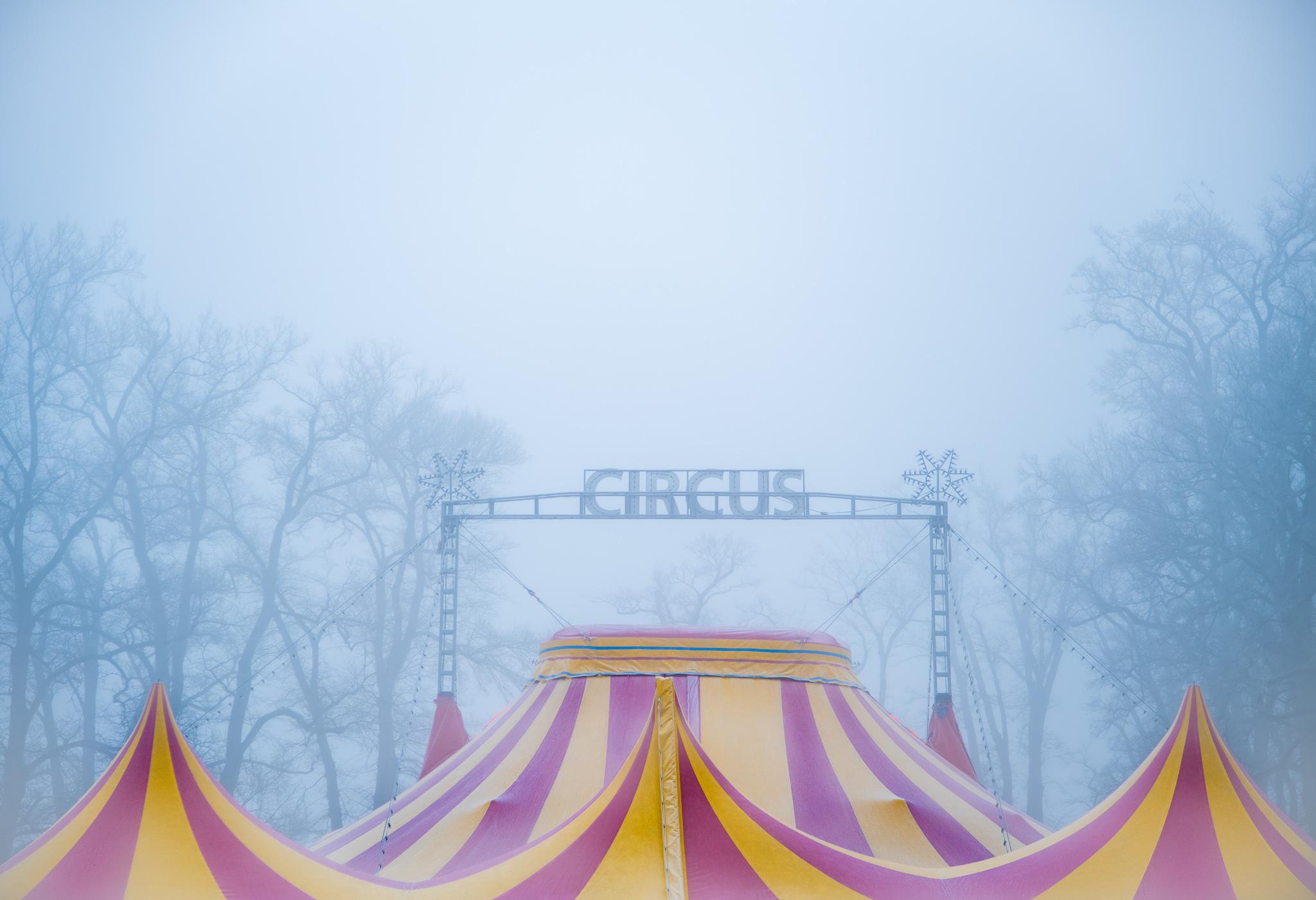 Zirkusfotografie | 2020