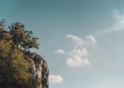 Naturfotografie   2020