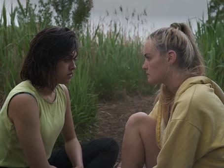 Summer of Mesa (2020) Review